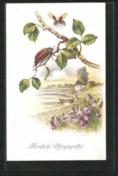 alte AK Herzliche Pfingstgrüße!, Maikäfer auf Birkenzweig 1917 in Sammeln & Seltenes, Ansichtskarten, Motive | eBay