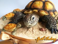 Desert Tortoise Cake - cake by William Tan - CakesDecor Cupcake Torte, Cupcakes, Realistic Cakes, Bithday Cake, Tortoise Care, Russian Tortoise, Turtle Birthday, 9th Birthday, Birthday Ideas