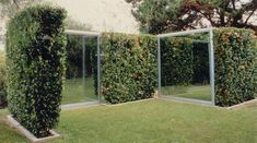 Two-Way Mirror/Hedge Projects by Dan Graham - Artwork We Love on ArtWeLove.com