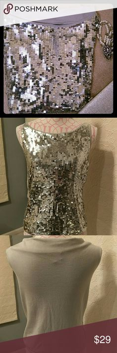 NEW top perfect for the season. New super cute top, can wear with jeans or a skirt. Silver sequin on 85% silk/spandex blend. The size is European 40, I listed as a medium please look at the measurements - armpit to armpit 18.5 inches, length 22 inches. Claudia Strater Tops