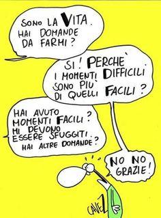 Cavezzali