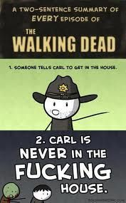 If I have learned 2 things watching walking dead they are: 1. I hate Laurie 2. Carl won't stay in the freakig house!!!!!!