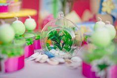 Terrarium from Tropical Surf Themed Birthday Party at Kara's Party Ideas. See more at karaspartyideas.com!