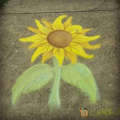 Took some chalk to a family picnic tonight, and spent about 30 minutes doodling a little (about 3 feet ) sunflower while chatting with friends. It was a nice evening, and definitely needed after my morning. I hope you had a beautiful Sunday, friends, and here's to another successful week on the planet ❤ #chalk #chalkart #chalkartist #sidewalkchalk #sidewalkchalkart #sidewalkchalkartist #chalkpastels #crayola #crayolasidewalkchalk #sunflower #flower #yellow #happy