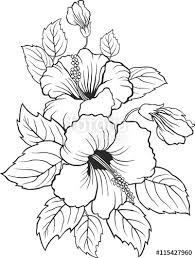 stock-vector-blooming-beautiful-hibiscus-flower-hawaii-symbol-card-or-floral-bac. - stock-vector-blooming-beautiful-hibiscus-flower-hawaii-symbol-card-or-floral-background-for-invitati - Coloring Pages For Grown Ups, Flower Coloring Pages, Colouring Pages, Adult Coloring Pages, Hibiscus Flower Drawing, Hibiscus Flowers, Flower Art, Drawing Flowers, Flower Ideas