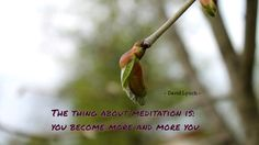 The thing about meditation is...