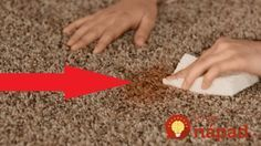 Carpet Cleaning Is Now Rocket Science Carpet Cleaning Equipment, Carpet Cleaning Machines, Cleaning Dust, Cleaning Hacks, Carpet Samples, Handheld Vacuum Cleaner, Commercial Carpet, New Inventions, Carpet Cleaners