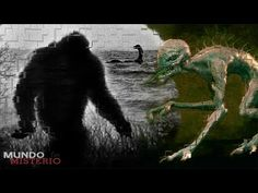 Top 5 Casos Reales De Expedientes X - videos de terror fantasmas vida real HD 2015 - YouTube