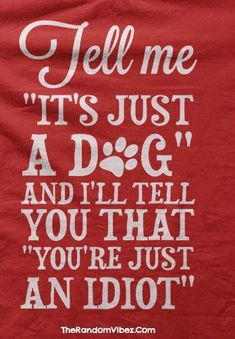 100 Best Quotes About Dogs & Famous Dog Quotes - Funny Dog Quotes - Dog Best Friend Quotes with Images The post 100 Best Quotes About Dogs & Famous Dog Quotes appeared first on Gag Dad. All Dogs, I Love Dogs, Puppy Love, Cute Dogs, Dogs And Puppies, Doggies, Boxer Puppies, Diy Pet, Der Boxer