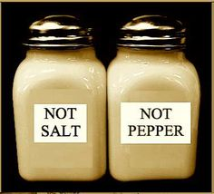Reverse Psychology Salt and Pepper Shakers