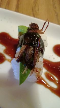 Article on entomophagy