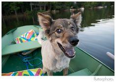 Our beloved dog Saatchi. Gone but never forgotten.