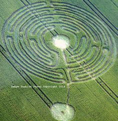 Crop Circle at Cellé, ds Loir et Cher, nr  Savigny-sur-Braye, Loir-et-Cher, France. Reported 14th June  2014
