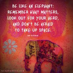 """""""Be like an elephant: Remember what matters, look out for your herd, and don't be afraid to take up space. Elephant Spirit Animal, Elephant Quotes, Elephant Love, Elephant Stuff, Quotes About Elephants, Wisdom Quotes, Quotes To Live By, Me Quotes, Great Quotes"""