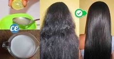 No need to spend a lot of money on fancy conditioners and hair treatments. The cure for dry hair is in your kitchen cupboard. This simple hair mask consists of three ingredients: coconut oil, honey and apple cider vinegar. Both…Read more → Coconut Oil Hair Treatment, Coconut Oil Hair Growth, Coconut Oil Hair Mask, Hair Mask For Dandruff, Diy Hair Mask, Frizzy Hair, Hair Mask For Growth, Hair Growth Treatment, Oil For Curly Hair