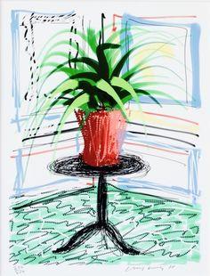 David Hockney, iPad Drawing Aloe Vera, 2010, Aurifer AG