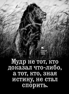 Wise Quotes, Words Quotes, Wise Words, Motivational Quotes, Inspirational Quotes, Russian Quotes, Reading Quotes, Great Words, Good Thoughts