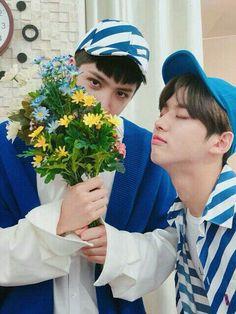 wooseok and hongseok Pentagon Hongseok, Hip Hop, E Dawn, Fandom, Fans Cafe, Jung Woo, Jiyong, Flower Boys, Cube Entertainment