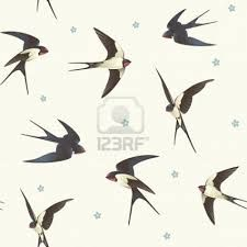 vintage swallow illustrations - Google Search