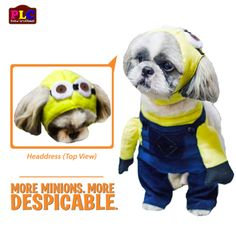 Despicable Me Minion Dog Costume   AVAILABLE IN WHOLESALE petloverscloset@yahoo.com  Manufacturer | Distributor | Retailer | Wholesaler | Exporter  www.facebook.com/petloverscloset