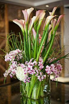 Callas, orchidées