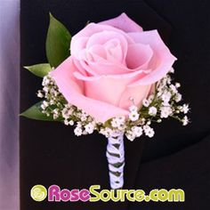 Pink Roses babys breath Boutonniere