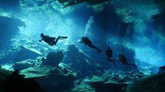Memorable Dive Adventure | Deepblu
