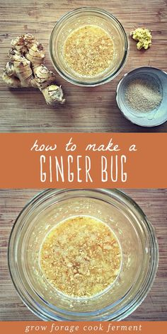 Learn how to make an all natural ginger bug using a wild ferment Its a very easy beginner fermentation recipe can be a base for all kinds of homemade soda drinks includin. Beer Recipes, Real Food Recipes, Cooking Recipes, Healthy Recipes, Disney Recipes, Ginger Bug, Ginger Drink, Ginger Soda, Probiotic Drinks