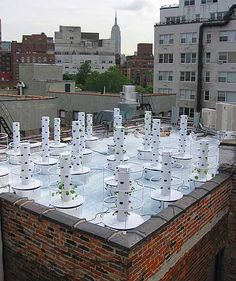 Hydroponic rooftop garden with the Tower Garden! http://www.kcmo.towergarden.com/ http://kcmotowergarden.blogspot.com/ The Future Of Urban Gardening: No Dirt, No Mess, No Kneeling, No Weeding perfect for your deck, patio, porch or yard.