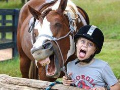 pets mais engraçados de 2012 - Foto 1 - Bichos