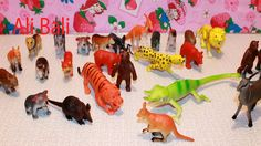 ANIMAL TOYS FOR CHILDREN ZOO ANIMAL TOYS COLLECTION
