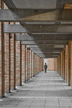 Hidden Architecture: Giudecca