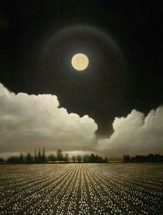 Beautiful moon and clouds. When its so cold you get a halo around the moon - I can't remember the technical term - meteorologists help please Moon Photos, Moon Pictures, Pretty Pictures, Amazing Pictures, Moon Pics, Moon Shadow, Sombra Lunar, Ciel Nocturne, Shoot The Moon