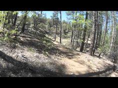 Trail 396 mountain bike trail in Prescott, Arizona