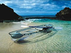 Clear Bottomed Kayak - Now wouldn't this be awesome!    Tests performed on the island of Oahu, Hawaii, have proven that the visibility on a sunny day and during non-turbulent water conditions can yield views to depths of 75 ft plus for the exploration of new worlds waiting to be discovered.   Tests have included encounters with pods of dolphins, coral farms and nocturnal underwater sea life.  http://www.clearbluehawaii.com/gallery/molokini/index.html
