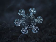Photographer Uses Cheap Home-Made Camera Rig To Take Stunning Close-Ups of Snowflakes