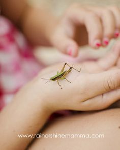 Children - Play with bugs to connect with nature