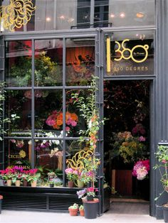 360 Degrés by Flower | St Germain, Paris