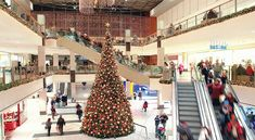 Stores offer Christmas displays as soon as holiday shoppers express interest! Holiday Time, Holiday Gifts, Holiday Decor, Christmas Decorations, Christmas Shopping, Christmas Sale, Christmas Displays, Christmas Stuff, Christmas Trees