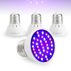 4 Lamps for Grow Indoor Plant Growing Plants Indoors, Grow Lights For Plants, Led Grow Lights, Aquarium Led, Rare Flowers, Indoor Plants, Light Colors, Light Bulb, Home Improvement