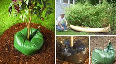 am (Mar — Gardening is not just for those with the enviable green fingers, the modern garden gadgets Garden Gadgets, Garden Tools, Garden Ideas, Steel Sheds, Home Tech, Tube, Gardening, Yard Tools, Lawn And Garden