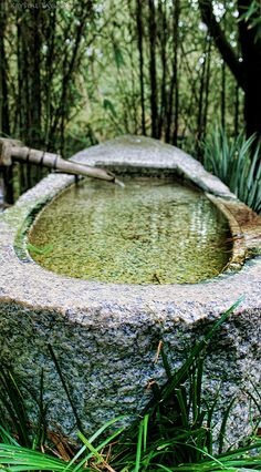 What do you think of this Japanese style water basin made from stone? Outdoor Gardens, Indoor Outdoor, Outdoor Bathtub, Goldfish Pond, Japanese Water, Water Features In The Garden, Garden Fountains, Shade Garden, Garden Plants