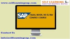 SAP all Modules Combo Course are Available in SELF LEARNING CENTER.  We have the training solutions for the modules like SAP SD, CRM, MM, ABAP, FICO, APO, WM, EWM, BO 4.1, HANA, and ABAP Webdynpro & OOPs.  Courses Details:  www.selflearningsap.com