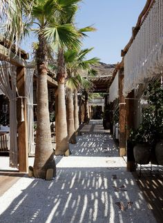 Mykonos, Greece - A guide to the best spots on the island Mykonos Island, Mykonos Greece, Crete Greece, Athens Greece, Beach Fun, Beach Trip, Khao Lak Beach, Lamai Beach, Koh Chang