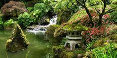 Portland Japanese Garden Pond  Honeysuckle life image via Haskell Tech