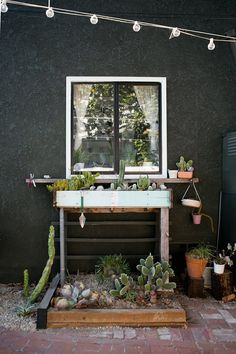 What a beautiful backyard succulent / cacti garden. Patio garden full of succulents and cactus :) Garden Deco, Cacti Garden, Cactus Plants, Indoor Cactus, Mini Cactus, Cactus Art, Hollywood Homes, North Hollywood, Old And New