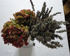 flower for winter