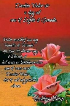 Lekker slaap Good Night Wishes, Day Wishes, Night Quotes, Morning Quotes, Evening Greetings, Evening Prayer, Goeie Nag, Goeie More, Afrikaans Quotes