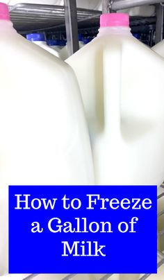 By freezing milk, you can take advantage of milk sale prices and two-for-one deals or stock up for an emergency situation. Use these simple tips to learn how to freeze a gallon of milk. Freezing Vegetables, Frozen Vegetables, Freezing Milk, Healthy Pork Recipes, Frugal Recipes, Hazelnut Recipes, Recipes For College Students, Meat Fruit, Freezer Organization