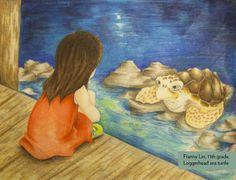 Art Contest Winner, Grades 9-12: Loggerhead sea turtle, Franny Lin, Age 17, Los Gatos High School